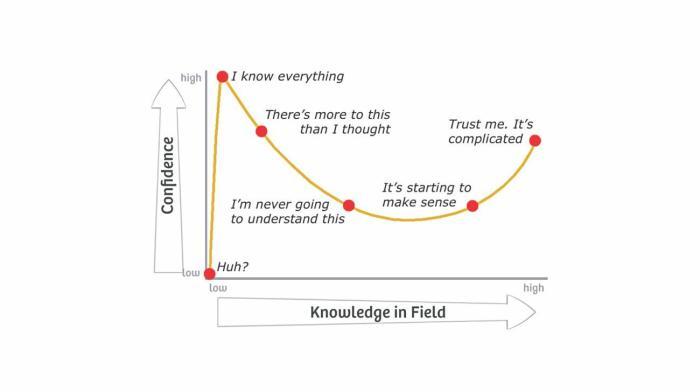 Resumen gráfico del efecto Dunning-Kruger